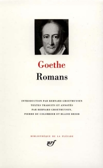Romans - Johann Wolfgang vonGoethe