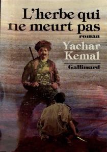 Au-delà de la montagne - YasarKemal