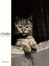 Chats -