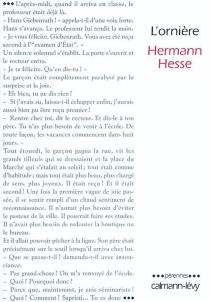 L'ornière - HermannHesse