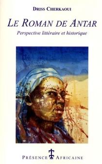 Le roman de Antar : une perspective littéraire et historique - DrissCherkaoui