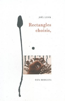 Rectangles choisis - Joël Leick