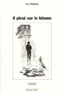Il pleut sur le bitume - LucMolinier