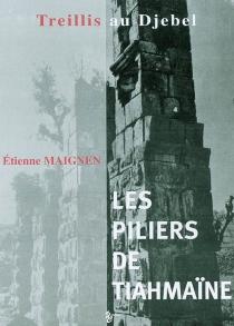 Les piliers de Tiahmaïne : treillis au djebel - ÉtienneMaignen