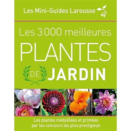 Les meilleures plantes de jardin les plantes for Plantes par internet