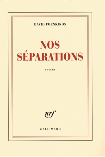 Nos séparations - David Foenkinos