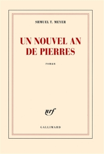 Un nouvel an de pierres - Shmuel T. Meyer