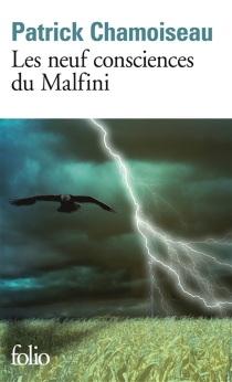 Les neuf consciences du Malfini - PatrickChamoiseau