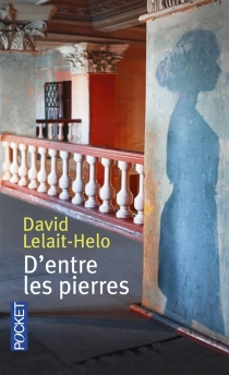 D'entre les pierres - DavidLelait-Helo