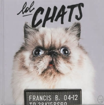 Lol chats - Josselin Bordat