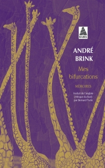 Mes bifurcations : mémoires - AndréBrink