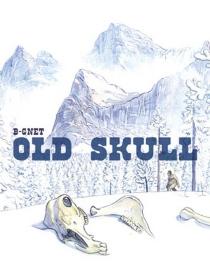 Old skull - B-Gnet