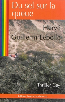Du sel sur la queue - Hervé Guillerm-Lebelle