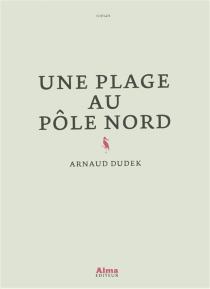 Une plage au pôle Nord - ArnaudDudek