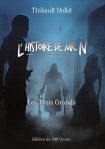L'histoire de Mr N. - ThibaultRollet