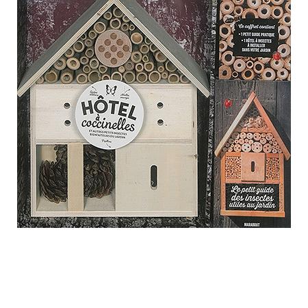 H tel coccinelles accueillir les insectes bienfaiteurs for Hotel a insecte coccinelle