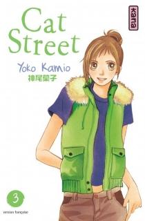 Cat street - YokoKamio