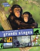 La planète des grands singes - AlexandrineCivard-Racinais