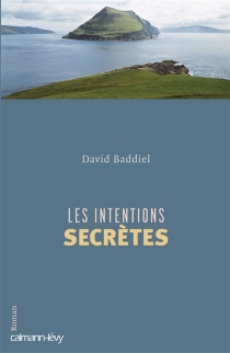 Les intentions secrètes - David Baddiel