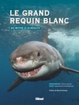 Le grand requin blanc : du mythe à la réalité - AlexandrineCivard-Racinais