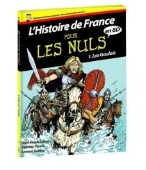 L'histoire de France pour les nuls en BD - GabrieleParma
