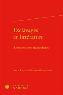 Esclavages et littérature : représentations francophones -