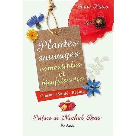 Plantes sauvages comestibles et bienfaisantes cuisine - Cuisine plantes sauvages comestibles ...