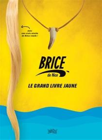 Brice de Nice : le grand livre jaune -