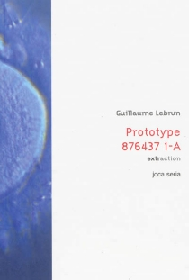 Prototype 876437 1-A - Guillaume Lebrun