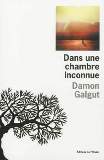 Dans une chambre inconnue - DamonGalgut