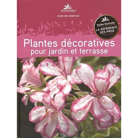 Plantes d coratives pour jardin et terrasse am nagement for Plantes decoratives jardin