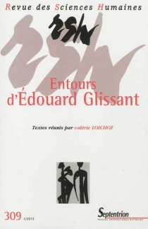 Revue des sciences humaines, n° 309 -