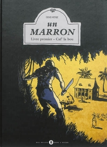 Un marron - DenisVierge