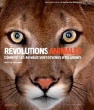 Révolutions animales : comment les animaux sont devenus intelligents ?