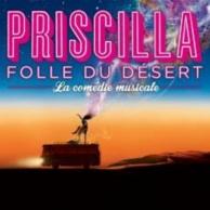 Priscilla, folle du désert, la comédie musicale
