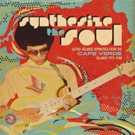 synthesise the soul