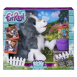Frr Ricky, Le Petit Chien Très Malin - HASE03841010