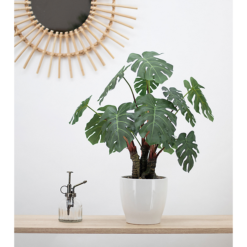 Monstera artificielle en pot céramique blanc - H56cm