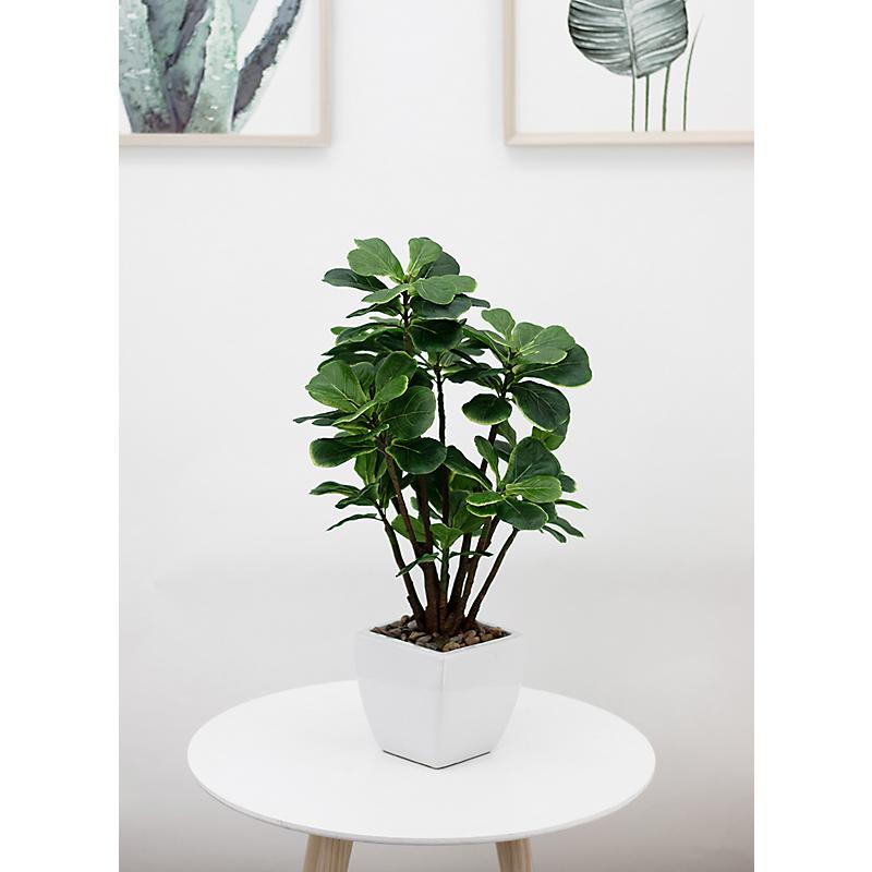 Ficus lyrata artificiel en pot céramique blanc - H54cm