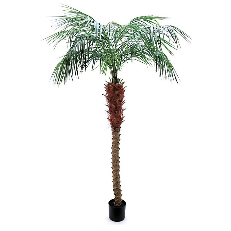 Palmier areca artificiel - H183cm