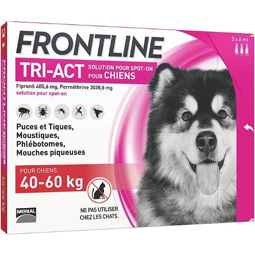 Combo pour chien de 40 à 60kg 6 pipettes