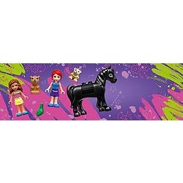 Lego® Friends - La Boîte De Briques De Heartlake City - 41431 - 41431