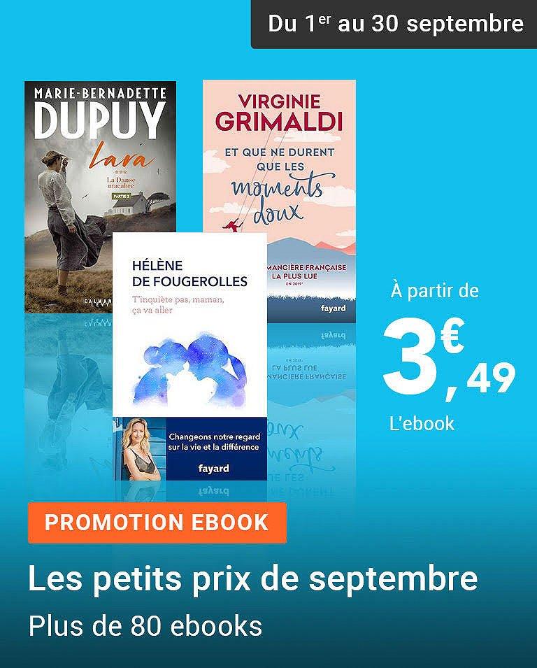 Promotion Ebook - Les petits prix de septembre