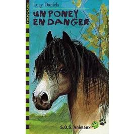 Poney en danger