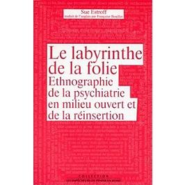 Le labyrinthe de la folie : ethnographie de la psychiatrie en milieu ouvert et de la réinsertion