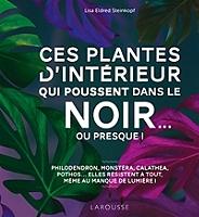 ces-plantes-dinterieur-qui-poussent-dans-le-noir-ou-presque-bien-choisir-puis-entretenir-des-plantes-dinterieur-se-contentant-de-peu-de-lumiere