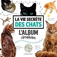 la-vie-secrete-des-chats-lalbum-de-lemission-percez-tous-les-secrets-de-vos-chats-preferes