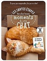 les-cartes-etapes-des-plus-beaux-moments-de-votre-chat-tu-peux-pas-comprendre-tes-pas-un-chat