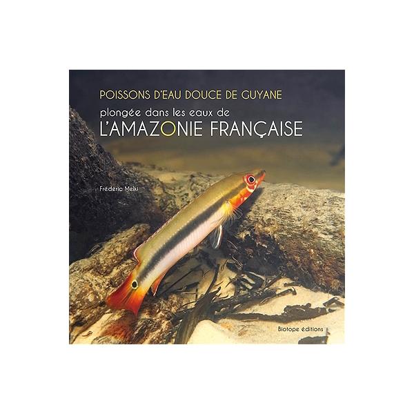 Poissons Deau Douce De Guyane Plongée Dans Les Eaux De Lamazonie Française