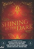 shining-in-the-dark